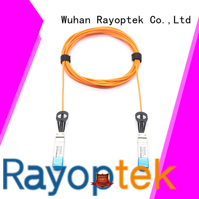 Rayoptek high quality 10gb switch directly sale for office